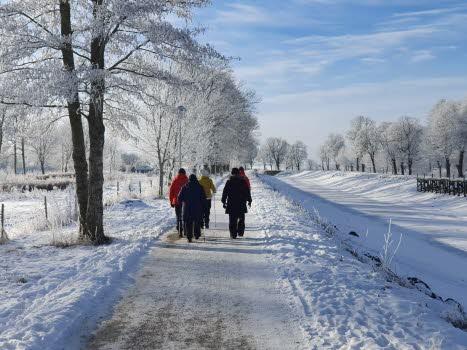 15 feb promenad
