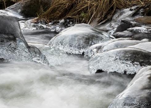 Trosa-ån 1