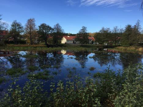 Vandring i Nävekvarn 20181019