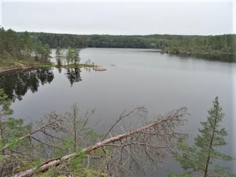 Vandring runt Ågelsjön