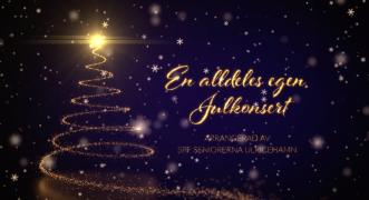 En alldeles egen Julkonsert