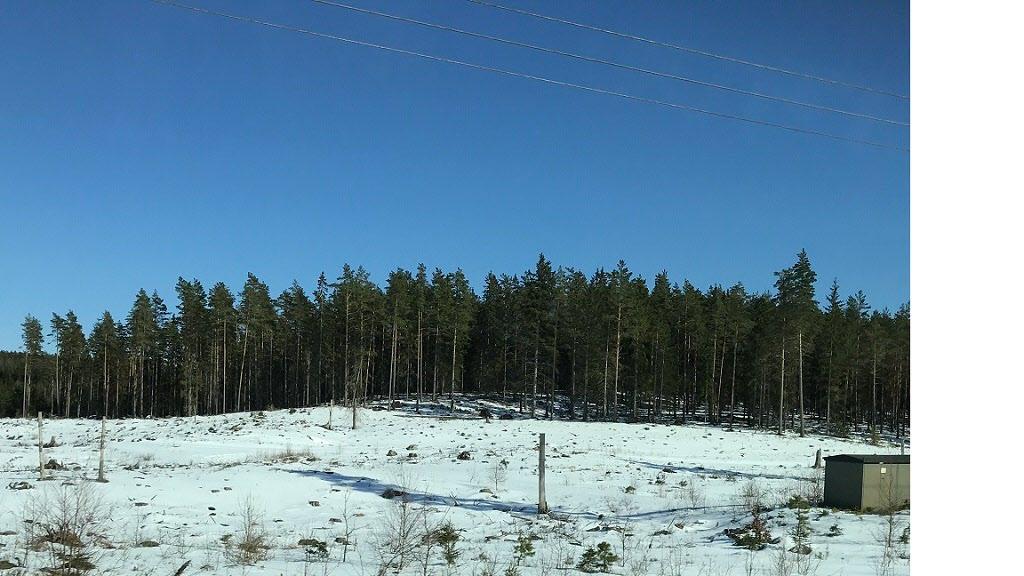 Resa genom ett vintrigt Småland