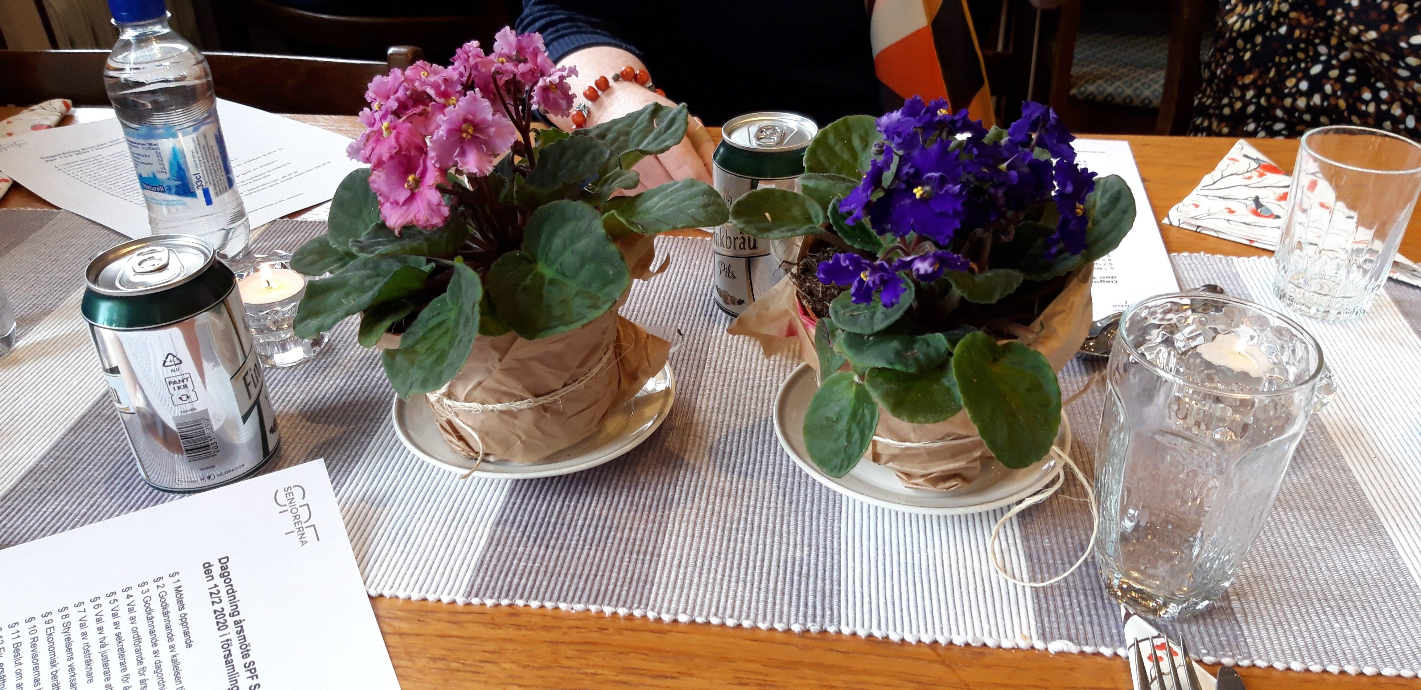 Blommor av olika slag och färger