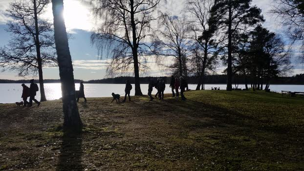 Promenad vid Väringen