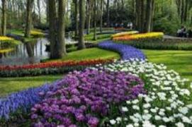 Resa till Holland 25 - 30 april 2022