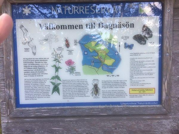 Välkommen till Dagnäsön.