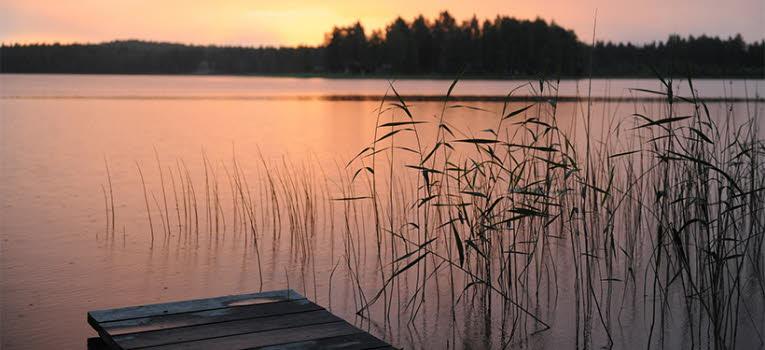 Sommarkväll vid vattnet