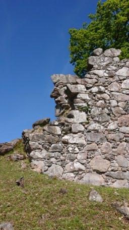 Ruinen med Gustav Wasa