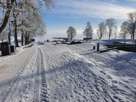 Vinterpromenad 15 feb