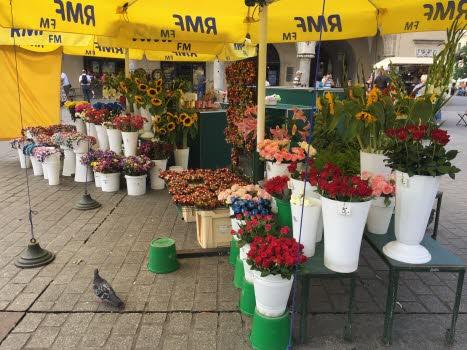 Blomsterfägring på torget