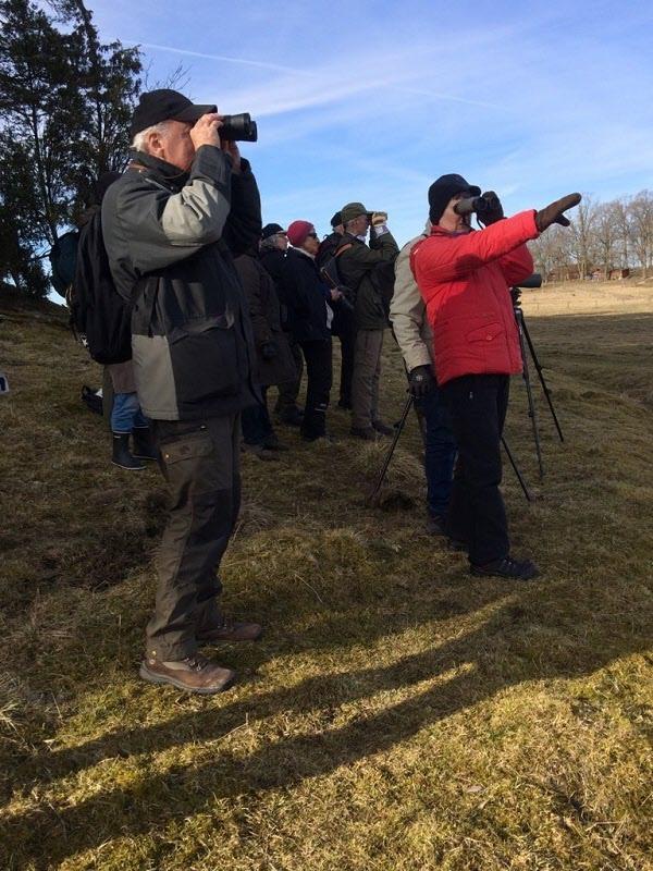Fågelskådare vid Skåra i Stigtomta.