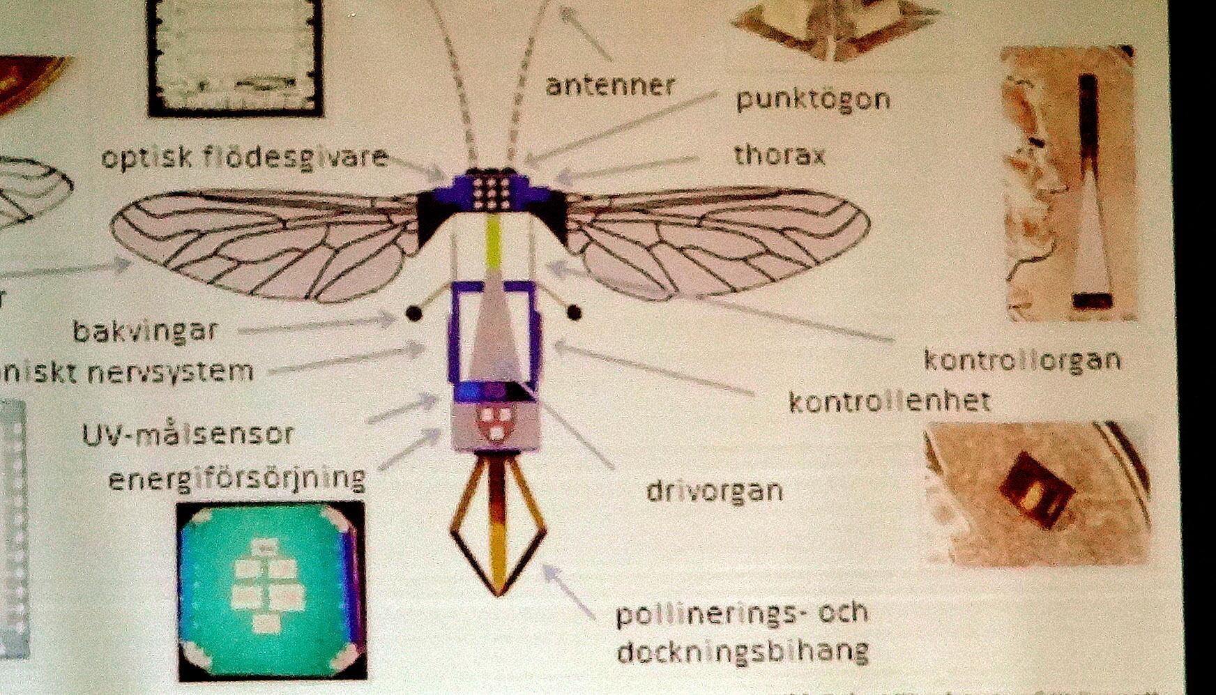 Mekaniska bin kan hjälpa till med pollineringen.
