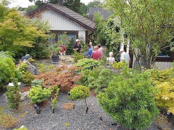 Den Japanska trädgården.