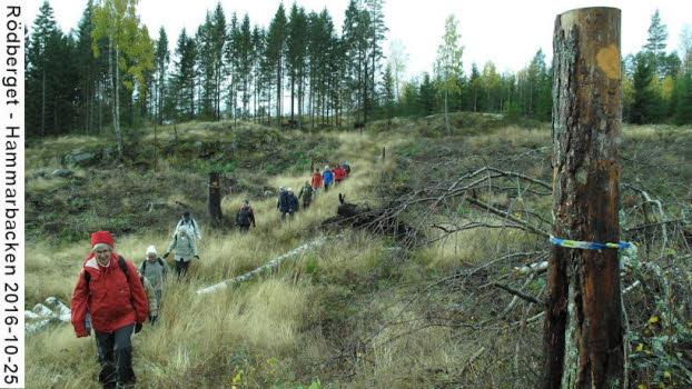 Rödberget-Hammarbacken
