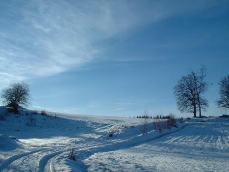 Vinterodyssé